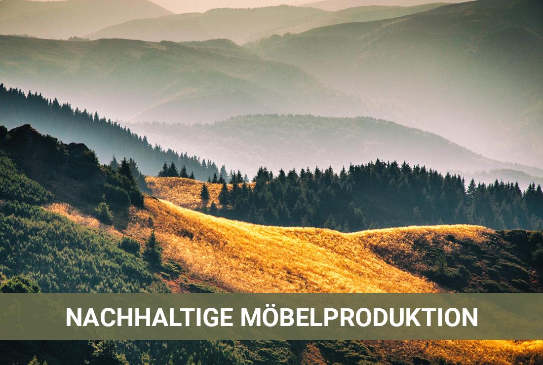 Nachhaltige Möbelproduktion In Deutschland